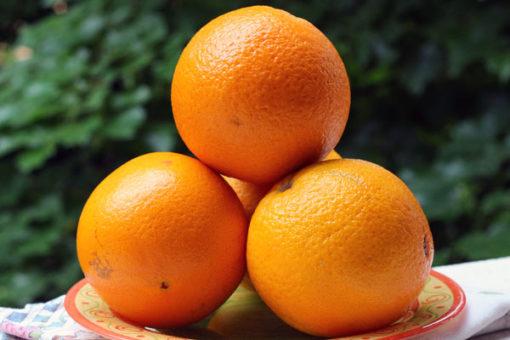 Arance usate per la crema all'arancia.
